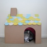 cathouse1