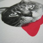 gee_whiskers_detail